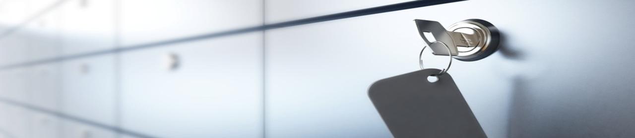 Servus Comp Data Security Bezpieczeństwo Danych Firma
